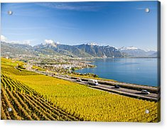 Vineyards Near Montreux Acrylic Print