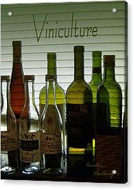 Viniculture  Acrylic Print
