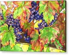 Vinous Acrylic Print by TR O'Dell