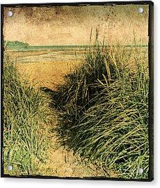 Vintage Beach  Acrylic Print by Roxy Hurtubise