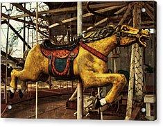 Vintage Carousel Horses 013 Acrylic Print