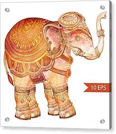 Vintage Elephant Illustration. Hand Acrylic Print