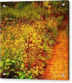 Acrylic Print featuring the photograph Vintage Garden Path by Terri Gostola