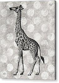 Gray Giraffe Acrylic Print by Flo Karp