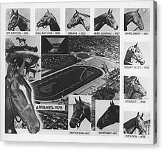 Vintage Horse Racing Head Shots Seattle Slew Acrylic Print by Retro Images Archive
