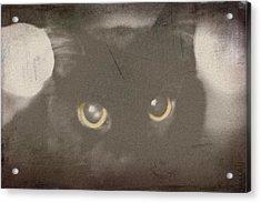 Vintage Karma Acrylic Print by Brady D Hebert