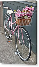 Vintage Pink Bicycle With Pink Flowers Art Prints Acrylic Print