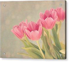 Vintage Pink Tulips Acrylic Print by Kim Hojnacki