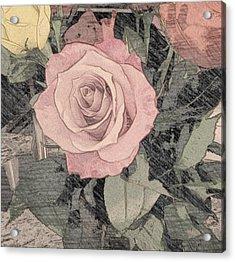 Vintage Romance Rose Acrylic Print