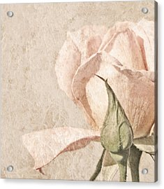 Acrylic Print featuring the painting Vintage Rose by Brooke T Ryan
