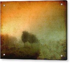 Vintage Tree Line Acrylic Print