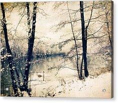 Vintage Winter  Acrylic Print by Jessica Jenney