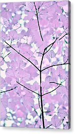 Violet Lavender Leaves Melody Acrylic Print by Jennie Marie Schell