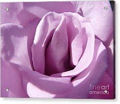 Violet Light Acrylic Print by Anat Gerards