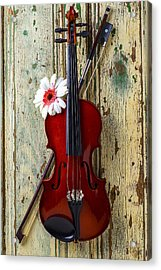 Violin On Old Door Acrylic Print by Garry Gay