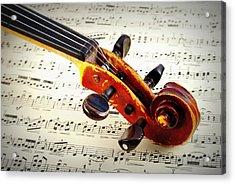 Violine Acrylic Print