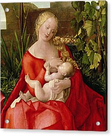 Virgin And Child Madonna With The Iris, 1508 Acrylic Print
