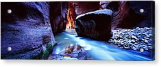 Virgin River At Zion National Park Acrylic Print by Panoramic Images