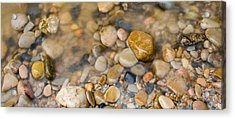 Virgin River Pebbles Acrylic Print by Adam Pender