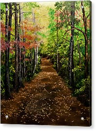 Virginia Path Acrylic Print by Jessica Tookey