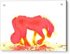Visible Pink Unicorn Acrylic Print