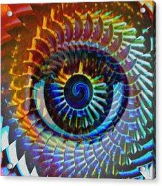 Visionary Acrylic Print by Gwyn Newcombe
