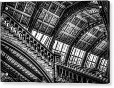 Visitor To The Museum Acrylic Print by Ross Henton
