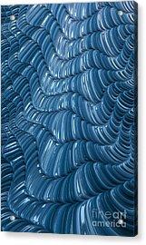 Visual Cortex Acrylic Print