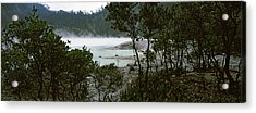 Volcanic Lake In A Forest, Kawah Putih Acrylic Print by Panoramic Images