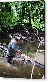 Volunteer Clearing Log Jam Acrylic Print by Jim West
