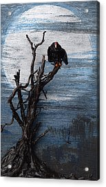 Vulture With Blue Moon Acrylic Print