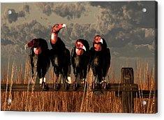 Vultures On A Fence Acrylic Print by Daniel Eskridge