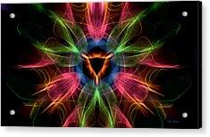 Vulva Galaxy Acrylic Print by Dan Terry