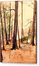 Wabigama Woods Acrylic Print