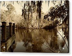 Waccamaw River In Autumn Sepia Acrylic Print