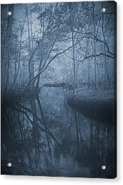 Waccasassa River Acrylic Print by Phil Penne