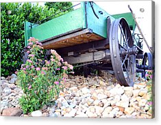Wagon And Blooms Acrylic Print by Larry Bishop