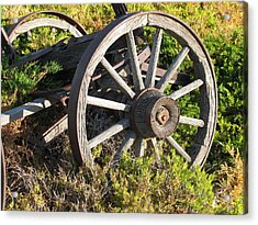 Wagon Wheels Acrylic Print by Steven Parker