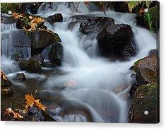 Wahkeena Creek 3 Acrylic Print