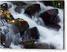 Wahkeena Creek Detail 1 Acrylic Print