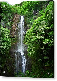 Waikani Falls At Wailua Maui Hawaii Acrylic Print by Connie Fox