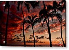 Waikiki Sunset Acrylic Print by David Smith
