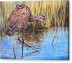 Wailing Bird Acrylic Print by AnnaJo Vahle