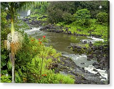 Wailuka River Acrylic Print by Bob Phillips