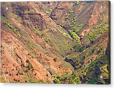 Waimea Canyon Abstract Acrylic Print