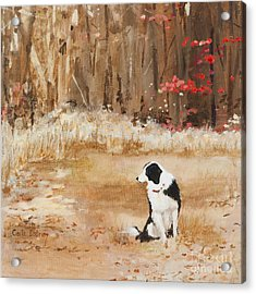 Waiting At Woods Edge Acrylic Print by Carla Dabney