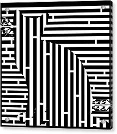 Waiting Cat Maze Acrylic Print by Yonatan Frimer Maze Artist