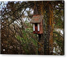 Acrylic Print featuring the photograph Waiting For Future Occupants  by Marjorie Imbeau
