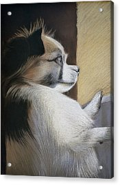 Waiting For Mommy Pastel Acrylic Print by Ben Kotyuk