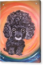 Waiting For My My Forever Home. Acrylic Print by Rachel Carmichael